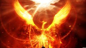 fantasy-wallpapers-dragons-phoenix-array-wallwuzz-hd-wallpaper-6328-1